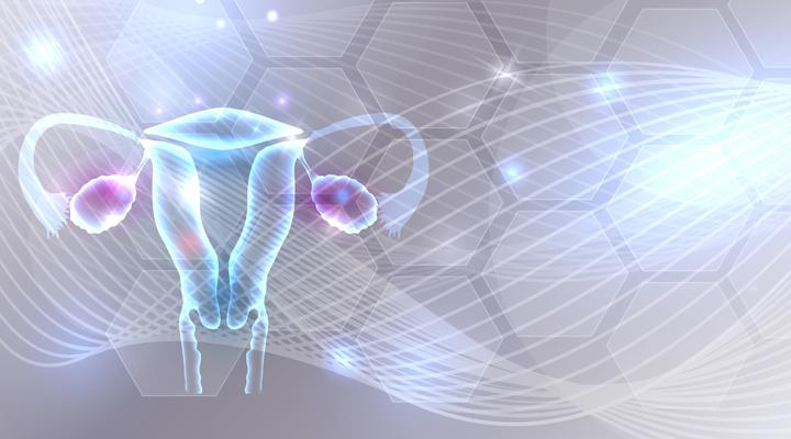 Κύστεις στις Ωοθήκες: Οι τύποι που επηρεάζουν τη γονιμότητα